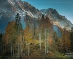 Am Fuße des Wettersteingebirges