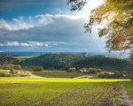 Bad Camberg - Erbach