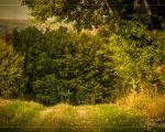 Wallrabenstein im Herbst