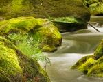 Die Prüm an den Irreler Wasserfällen