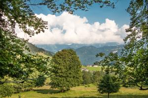 Beispiel für Einrahmungen (Ramsau, Nationalpark Berchtesgaden)