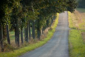 Die Straße führt den Blick durch das Bild.