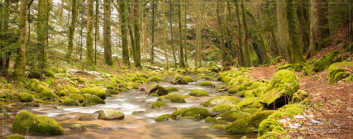 Moosbewachsene Steine und Stromschnellen machen den Grobbach zu einer Top-Location für die Bachfotografie.